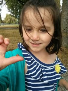 sophie ladybug